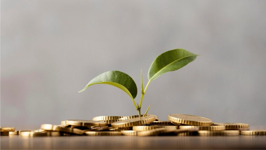 Why entrepreneurship is important in economy
